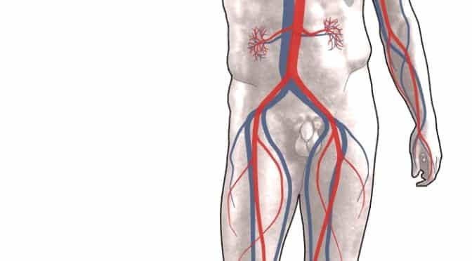 Diéta podľa krvnej skupiny