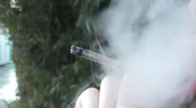 Je marihuana neškodná?