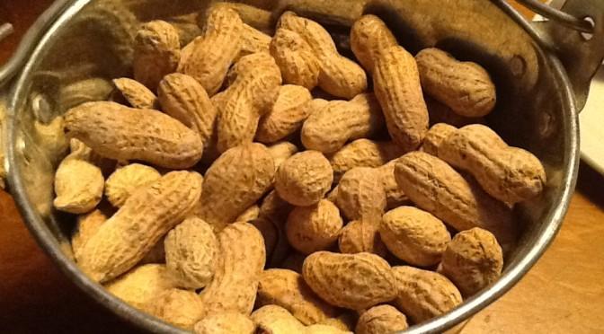 Pseudocast #180 – Alergia na arašidy, najmenšie organizmy, Gersonova terapia
