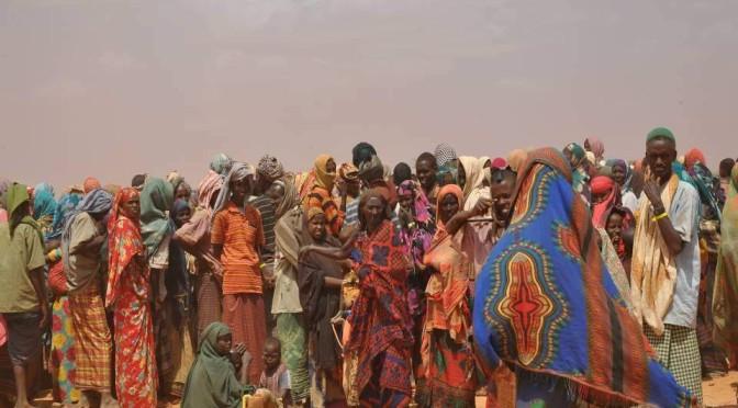 Pseudocast #198 – Utečenecké právo, GM pšenica
