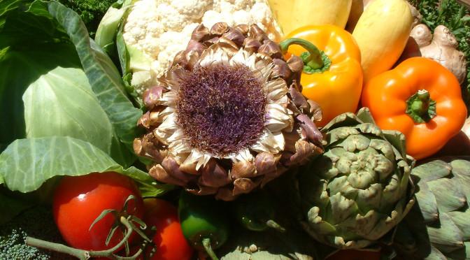 Pseudocast #221 – W7X update, Deepak Chopra, vegetariánstvo, čiapka Shield