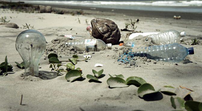 Pseudocast #297 – Dingovia a austrálsky ekosystém, v oceáne chýba plast